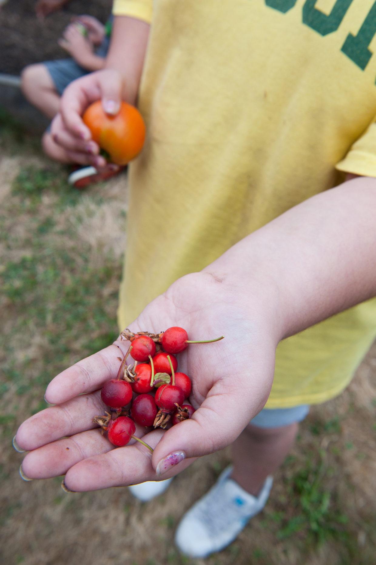 Kids dig gardening