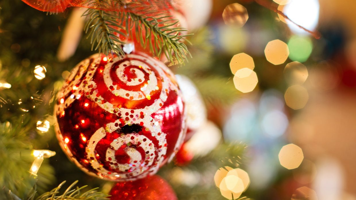Guide helps you find your Christmas tree