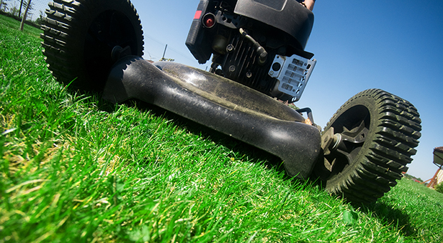 Consider the options when buying a lawn mower