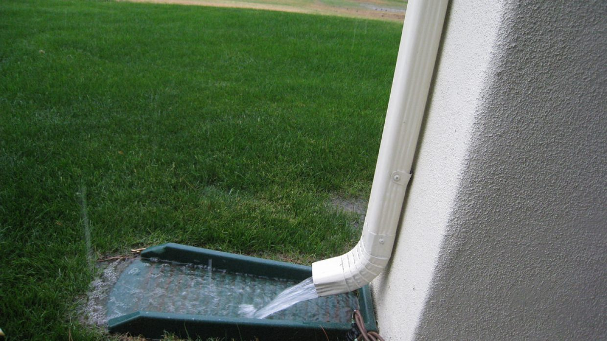 Stay on top of moisture and insect damage or pay the price