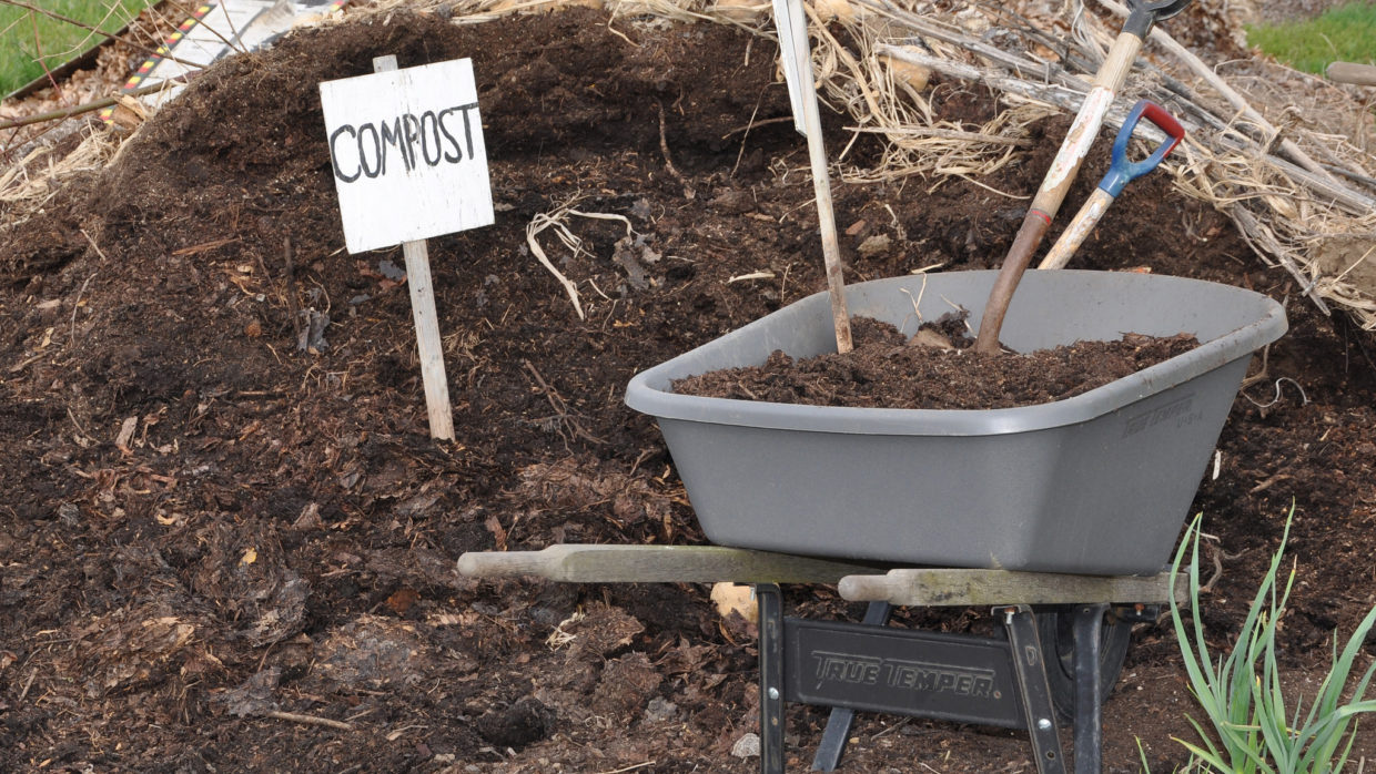 Answers to 3 common compost problems