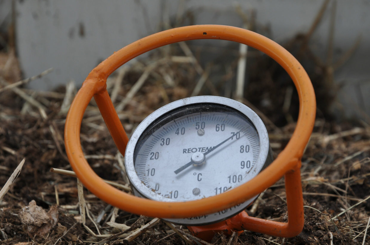 Let soil temperature guide you when planting vegetables