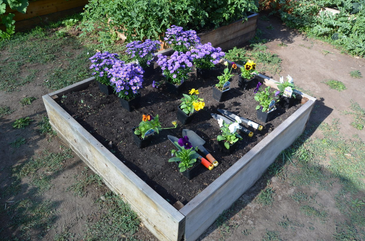 Create gardens accessible to all