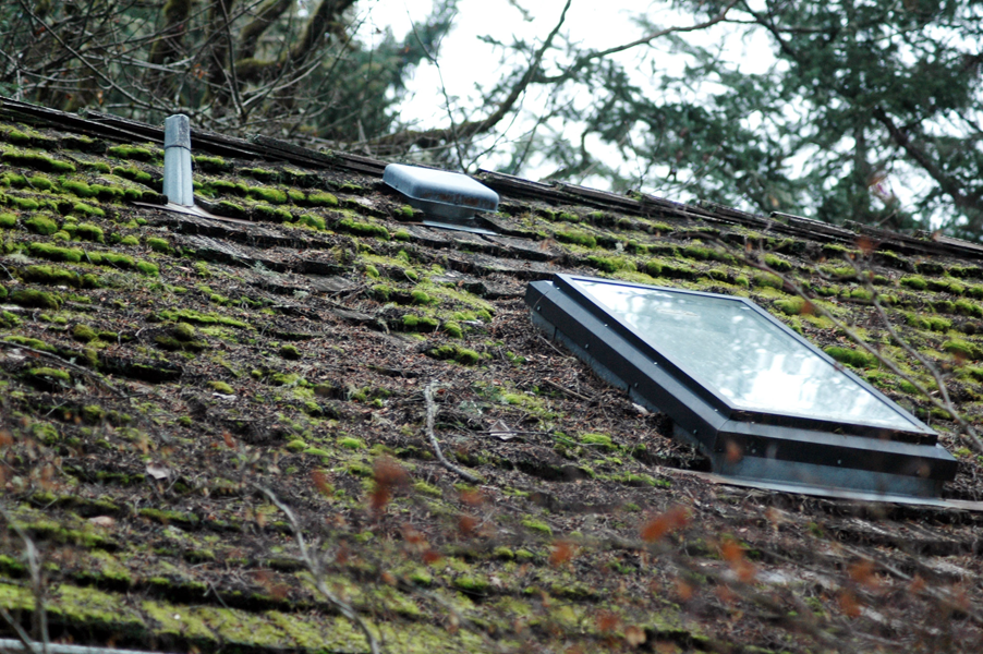 Maintaining a moss-free roof takes some effort