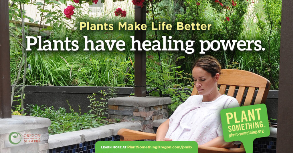 Plants Have Healing Powers