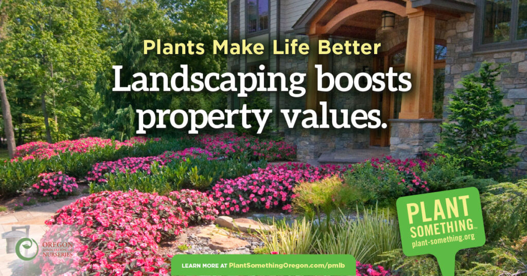 Landscaping boosts property values