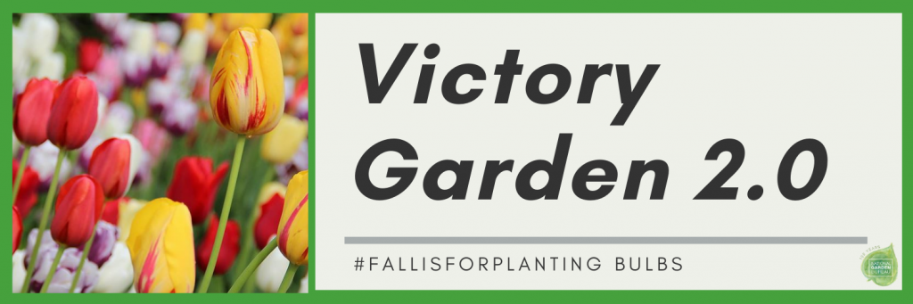 #FallisforPlanting Fall-Planted Bulbs Guarantee a Colorful Spring Garden
