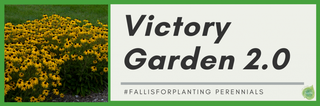#Fallisforplanting Perennials Plus Tomato, Bacon & Basil Tart😋