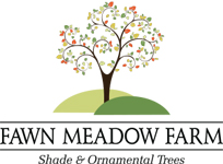 Fawn Meadow Farm LLC