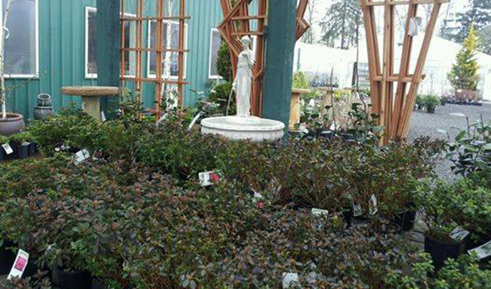 Green Thumb Garden Center