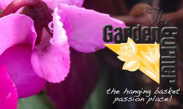 Garden Corner, The