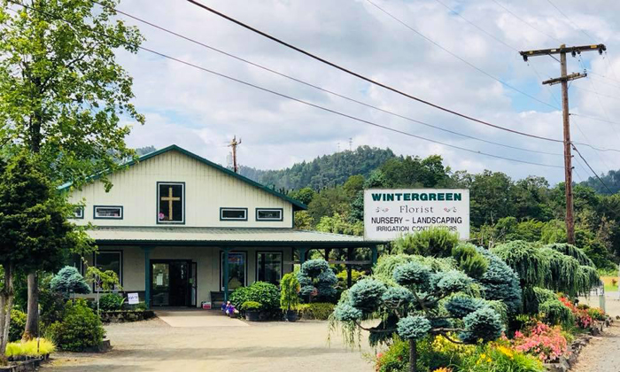 Wintergreen Nursery, Landscaping & Florist
