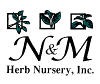 N & M Herb Nursery Inc.