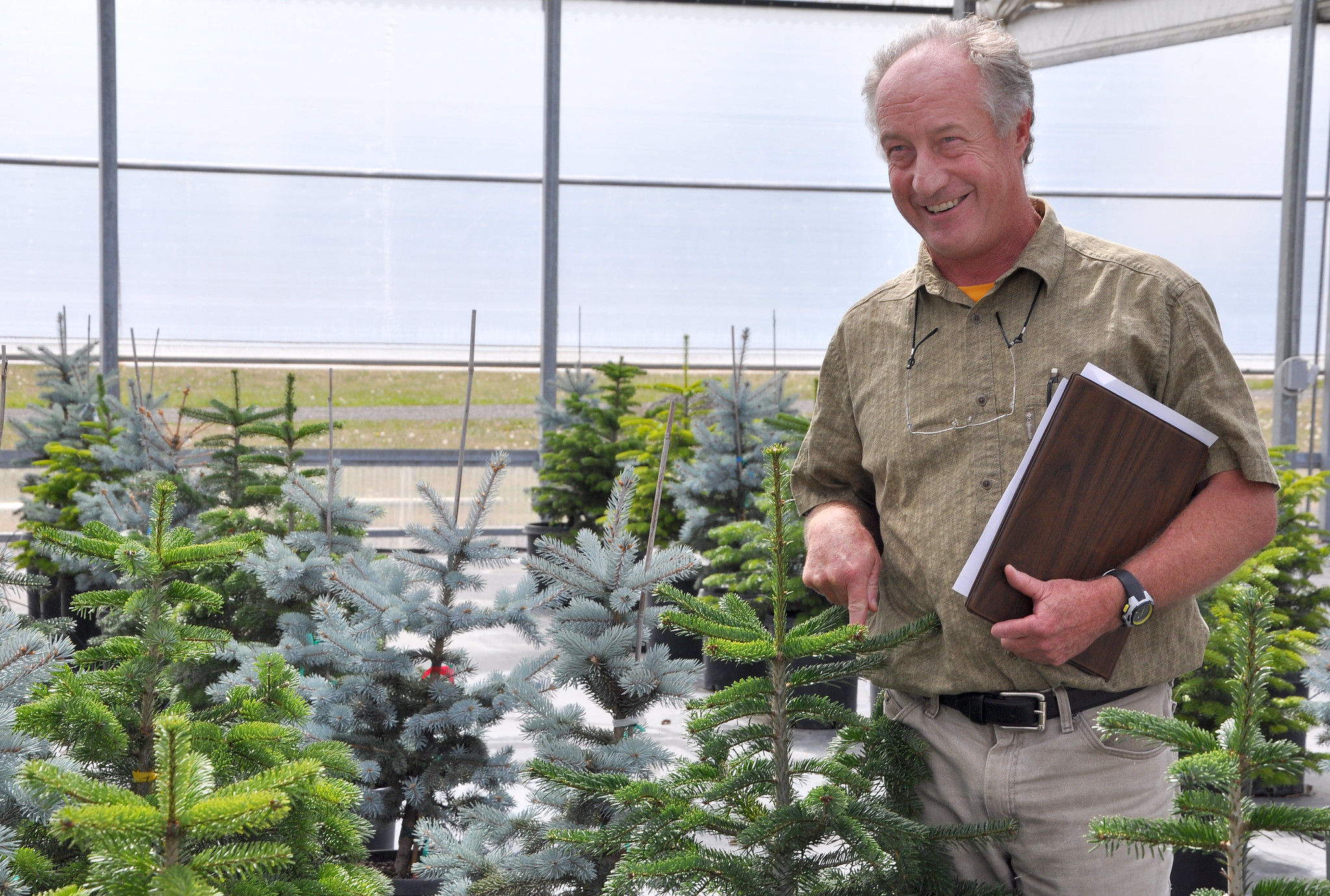 Some U-cut Christmas tree farms closed but supply adequate