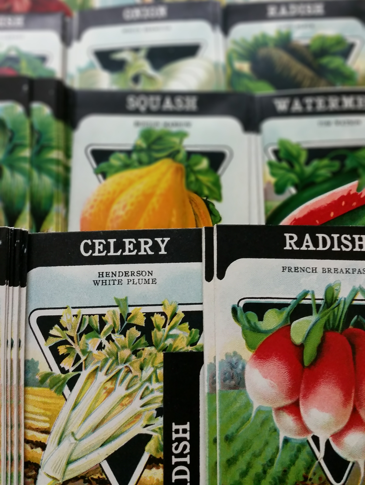 COVID-19 brings changes to garden centers
