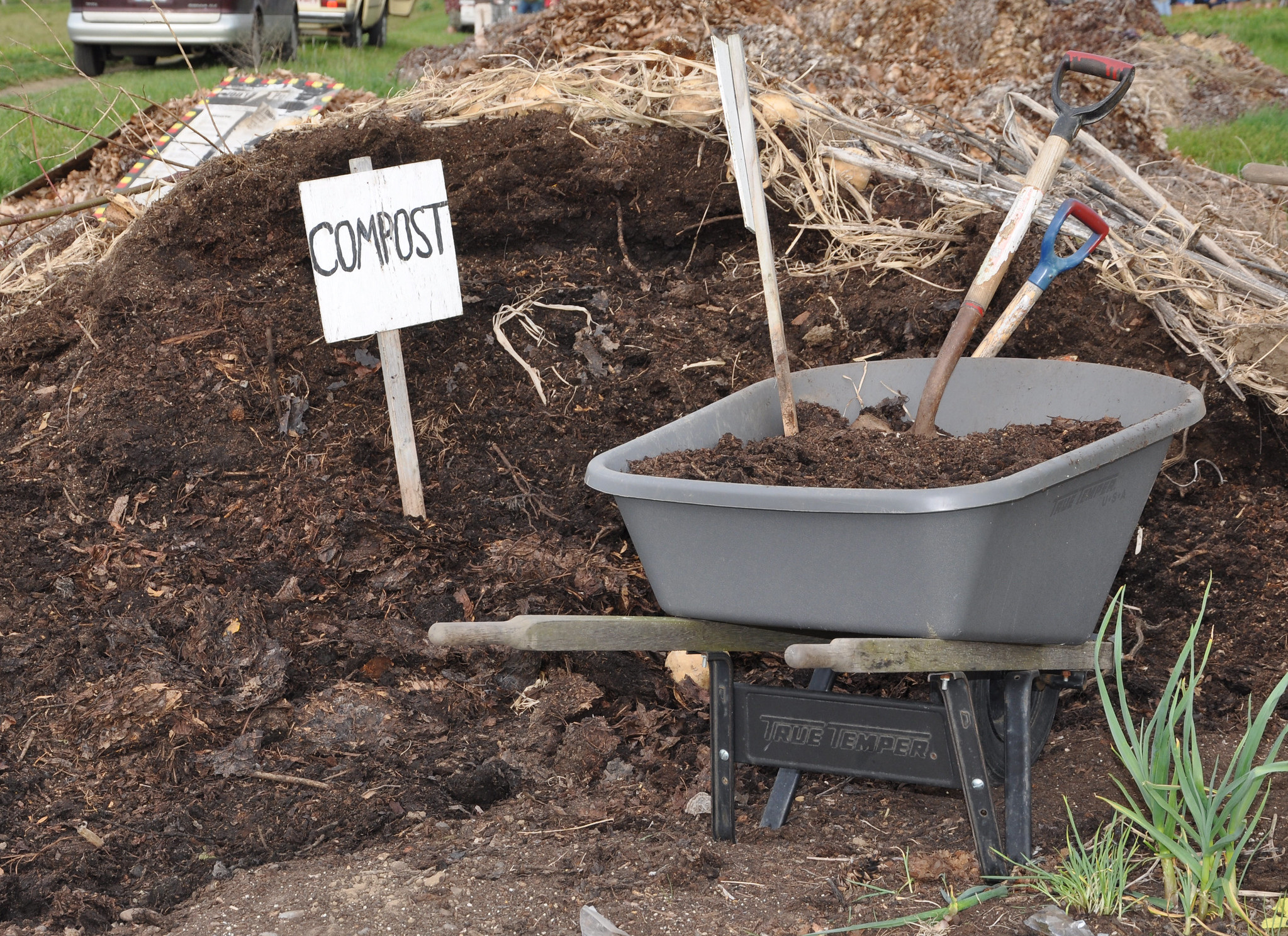 Adding compost improves soil's texture and adds nutrients