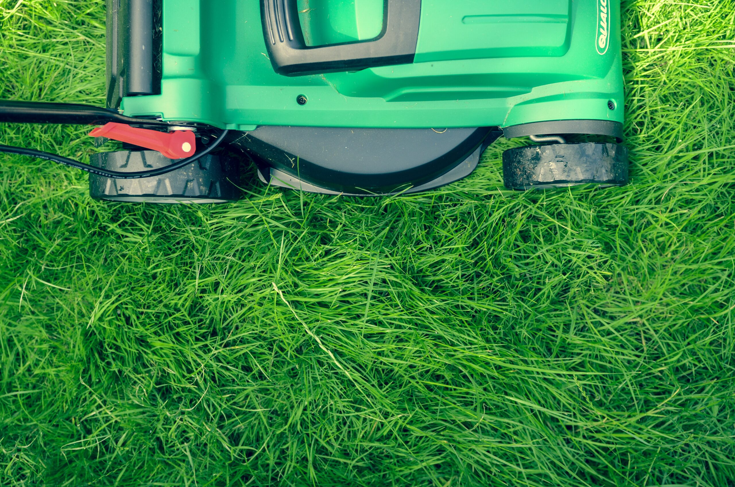 Choose a lawn mower to fit your needs