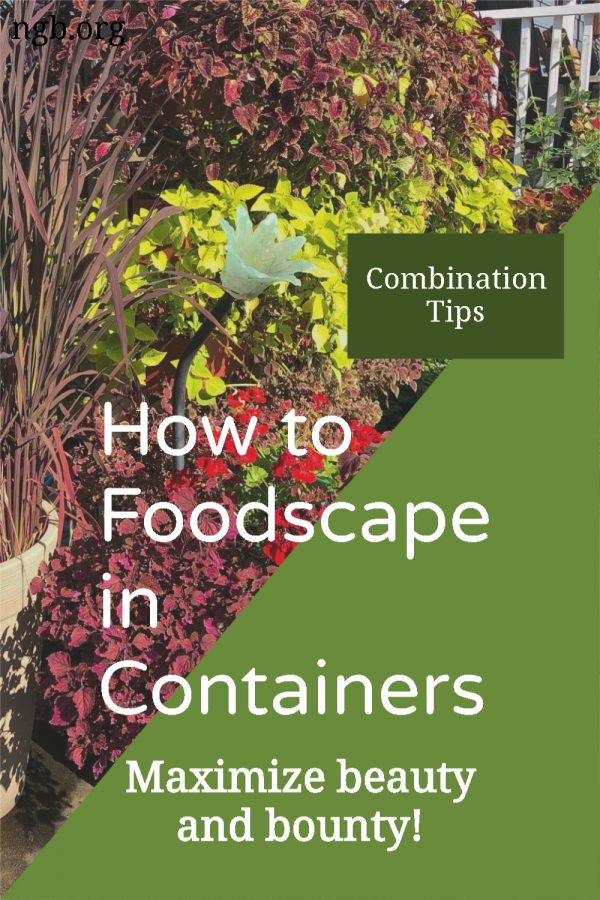How to Foodscape in Containers