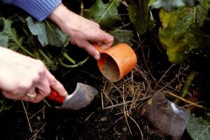 Photo of applying fertilizer