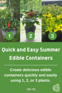 Quick and Easy Summer Edible Containers, 1-2-3!