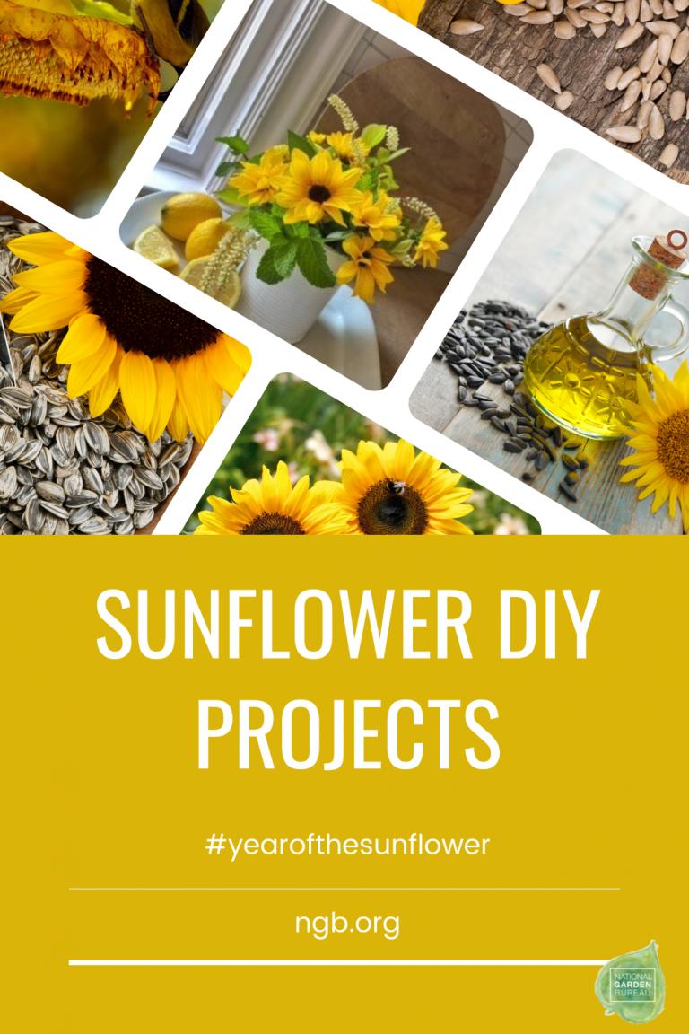 Sunflower DIY Ideas